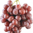 Grapes — Stockfoto #3205478