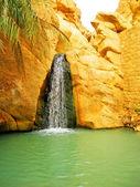山オアシス chebika の滝 — ストック写真