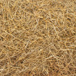 Stock Photo: Hay texture