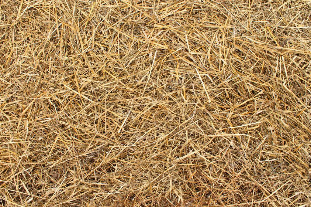 как высушить сено если намочило дождем период родовой