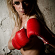 Boxer girl - Stock Photo