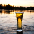 Sunset beer — Stock Photo