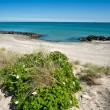 Skagen — Stock Photo #3536307