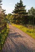 田園スウェーデン — ストック写真