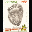 Post stamp — Foto Stock #3026250