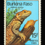 Post stamp — Stock Photo #3028023