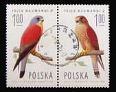Post stamp — Foto Stock