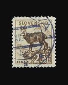 Post stamp — Stock Photo