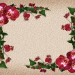Orchids and Bougainvillea floral border — 图库照片