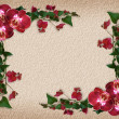 Orchids and Bougainvillea floral border — Stock Photo