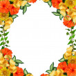 Tropical flowers border — Stock Photo #2754946