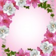 Floral border azaleas and magnolia - Stock Photo