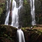 Waterfall — Stock Photo #3731737
