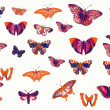 Stock Photo: Set of different butterflies