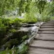 Wood bridge in Plitvice - Stock Photo