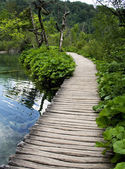 Wood bridge in Plitvice — Stock Photo