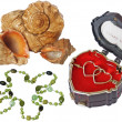Cockleshells, a musical casket and beads — Stock Photo #2758622