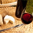 Wine Picnic — Stock Photo