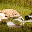 Wine Picnic on grass - Stock Photo