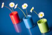 Flower Paints — Stock Photo