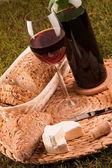 Wine Picnic — Stock Photo