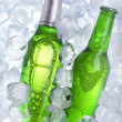 Cold beer! — Stock Photo