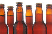 Closeup Beer Bottles — Stock Photo