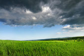 Green fresh field, Blue Dramatic Sky And Grey Clouds — Стоковое фото