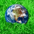 Earth at the green grass — Stock Photo