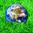 Earth at the green grass - Stock Photo