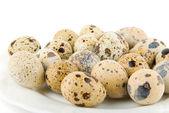 Delicatessen quail eggs — Stock Photo