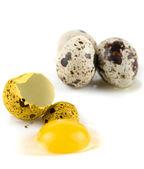 Broken egg quail — Stock Photo