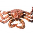King crab — Stock Photo #2760902