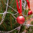 Christmas firtree — Stockfoto
