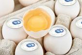 Aluminium ägg — Stockfoto