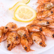 Shrimps — Stockfoto