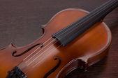 Violin closeup — Stock Photo