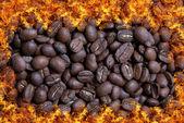 Coffee bean in fire — Stock Photo