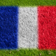 Flag of france on grass — Stock Photo