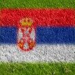 Royalty-Free Stock Photo: Flag of serbia on grass