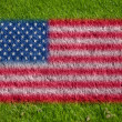 Flag of usa on grass - Stock Photo