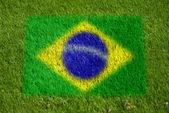 Flag of brazil on grass — Stock Photo