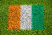 Flag of cote d'ivoire on grass — Stock Photo