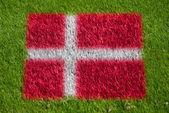 Flag of denmark on grass — Stock Photo