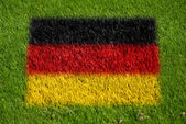 Flag of germany on grass — Stock Photo