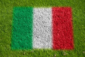 Flag of italy on grass — Stock Photo