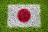 Flag of japan on grass — Stock Photo