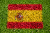 Flag of spain on grass — Stock Photo