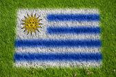 Bandiera dell'uruguay sull'erba — Foto Stock