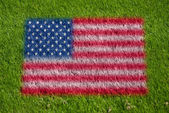 Flag of usa on grass — Stock Photo